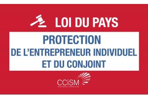 Loi du pays relative à la protection de l'entrepreneur individuel