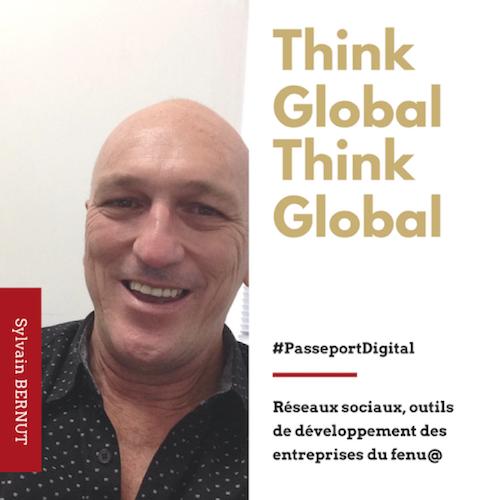 "Sylvain BERNUT - API FORMATION - Formateur et Coach - ""Think Global"""