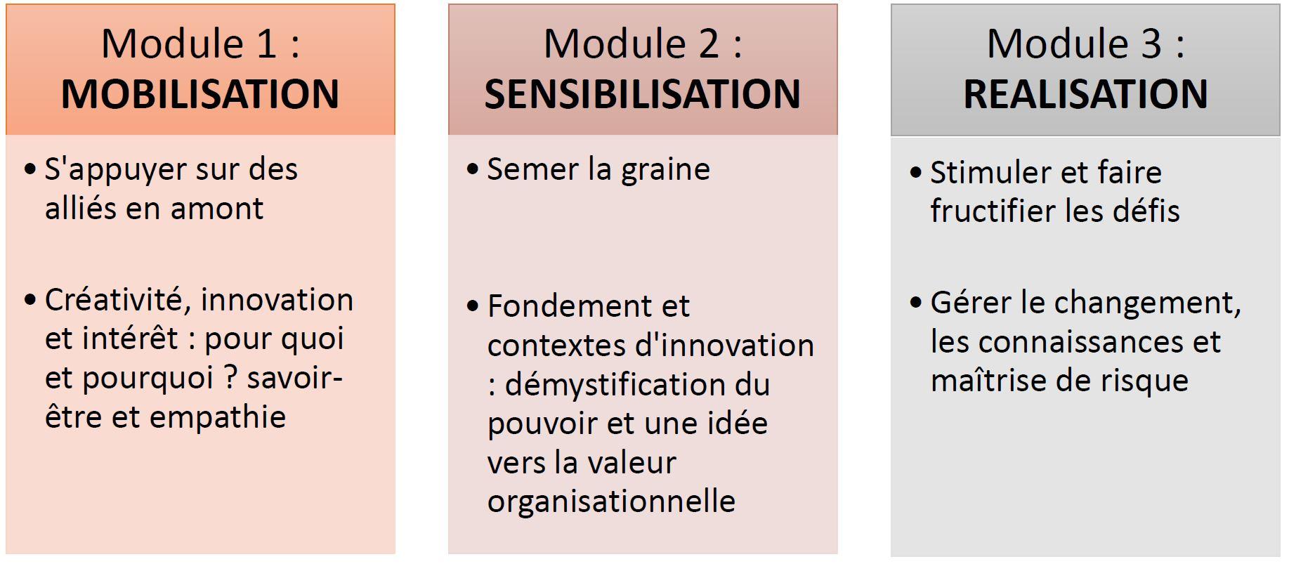 Les modules de formation intrapreuneurship
