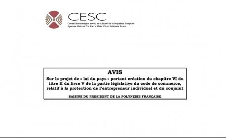 CESC - Avis 50/2016 Projet de « loi du pays » relatif à la protection de l'entrepreneur individuel et du conjoint